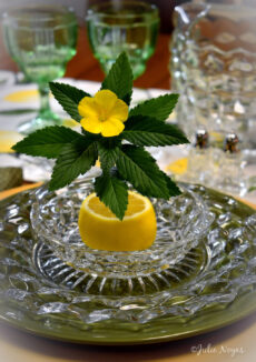 Fostoria American Lemon Dish and Flowers